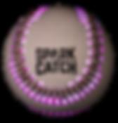 sc-ball 紫.png