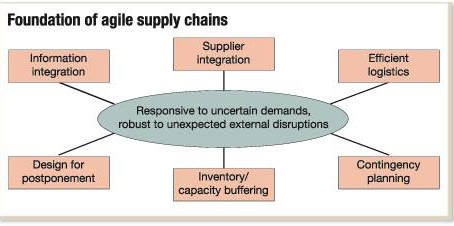 The Foundation of Agile Supply Chain Innovation...