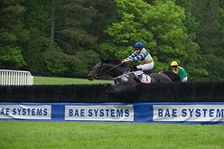 Steeplechase Fencing