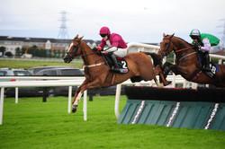 racing hurdle