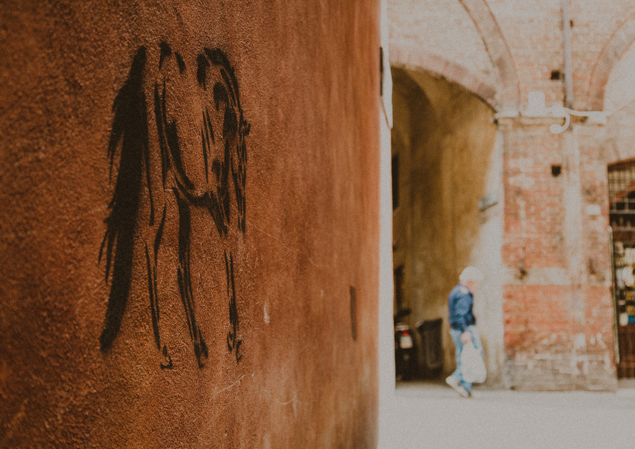 When in Italy - 'The horse on the wall'