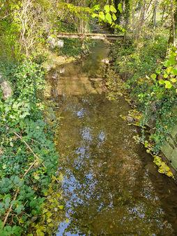 """Ruisseau """"le Seron"""""""