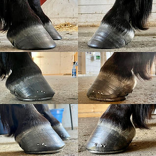before after shoes good.jpg