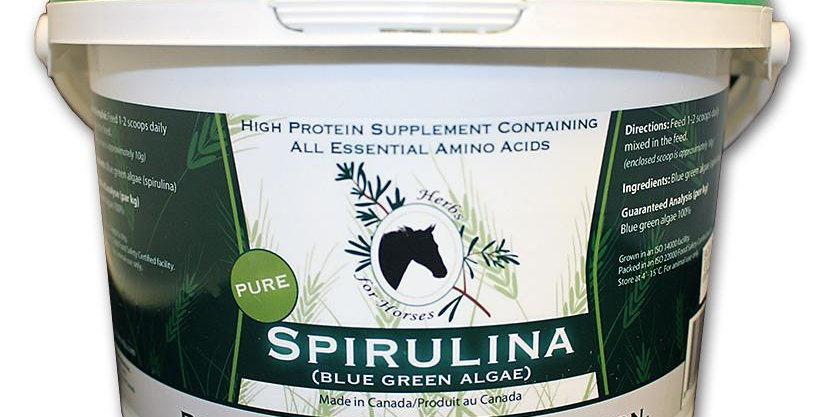 Spirulina (Blue Green Algae)