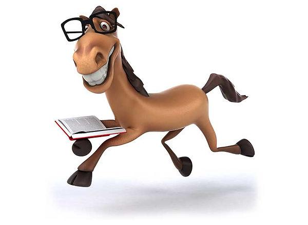 horse teacher.jpg
