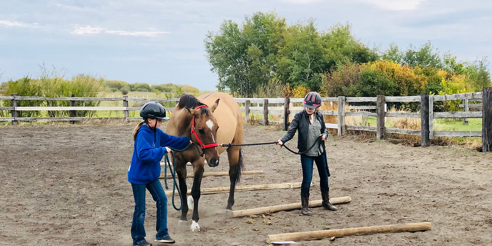Equine Assisted Learning - Spring Youth Session