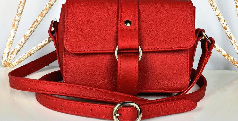Berry Mini Handbag -Red