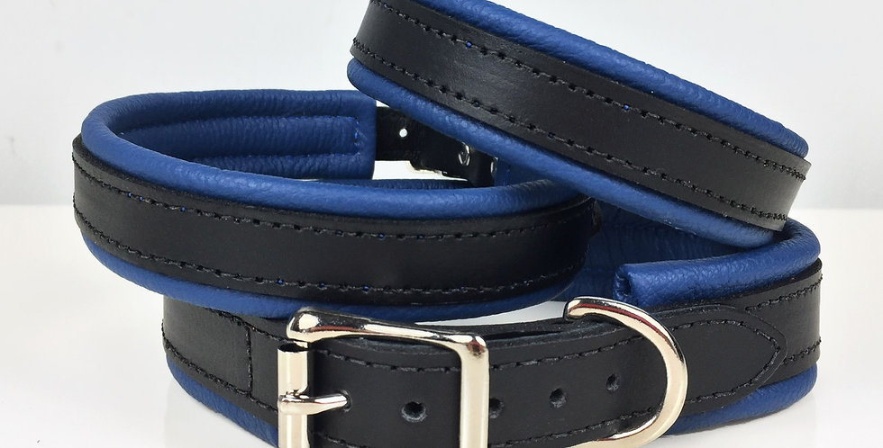 Leather Blue & Black Padded Leather Dog Collar
