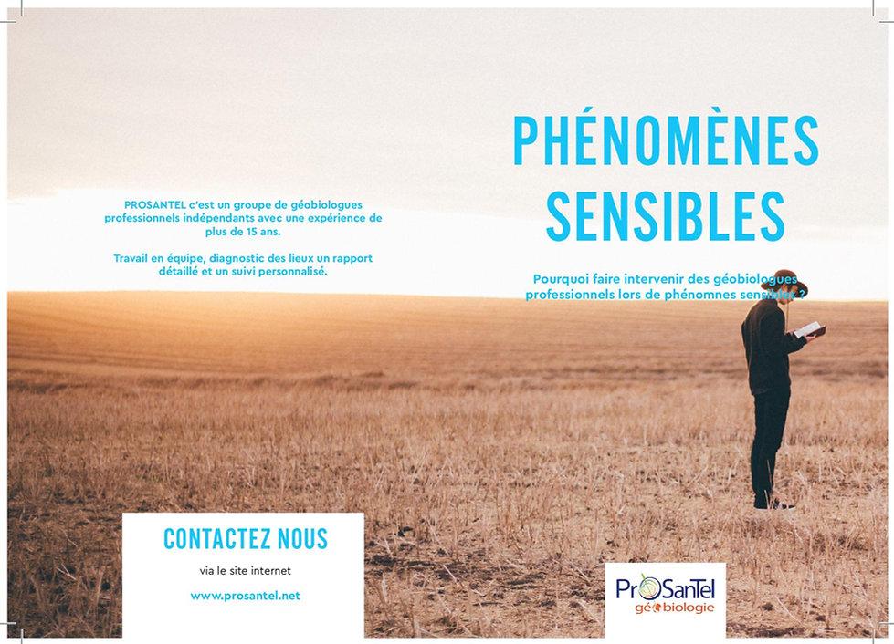Phénomènes_sensibles_FINAL_A4-page-001
