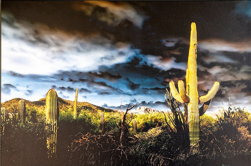 Monsoon's Exit by Jay Pierstorff