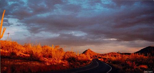 SONORAN DESERT HIGHWAY
