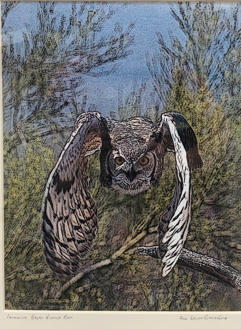 """""""Incoming! (Great Horned Owl"""" by Ana Laura Gonzalez"""