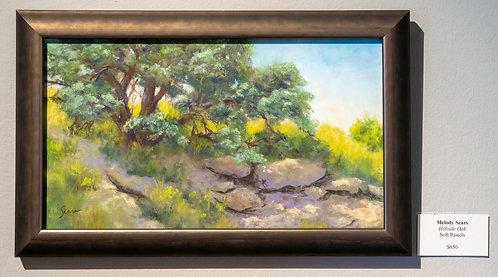 Hillside Oak by Melody Sears