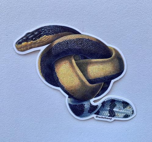 Snake Knot Sticker by Rachel Ivanyi