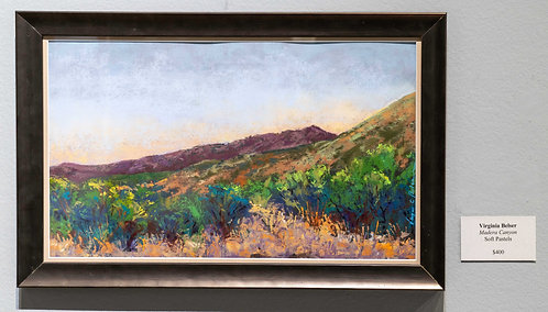 Madera Canyon by Virginia Belser