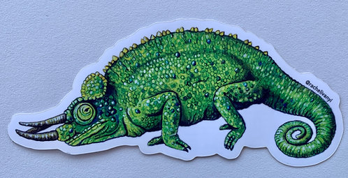 Chameleon Sticker by Rachel Ivanyi