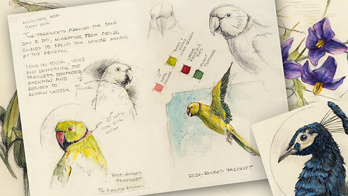 Journaling in Nature Skills: Graphite, Watercolor & Gouache Sketches