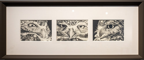 Owl Expressions by Sue deLearie Adair