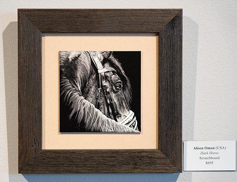 Dark Horse by Alison Oman