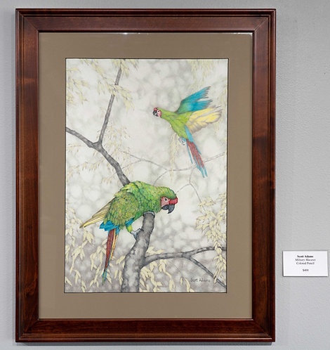 Military Macaws by Scott Adams