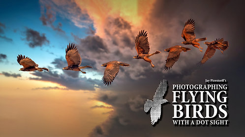 Photograph Flying Birds with Dot Sight (Nov. 21)