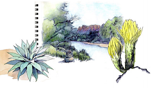 Thumbnail Sketching