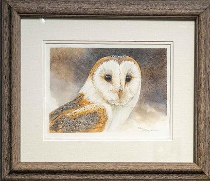 Barn Owl Study by Sharon Schafer