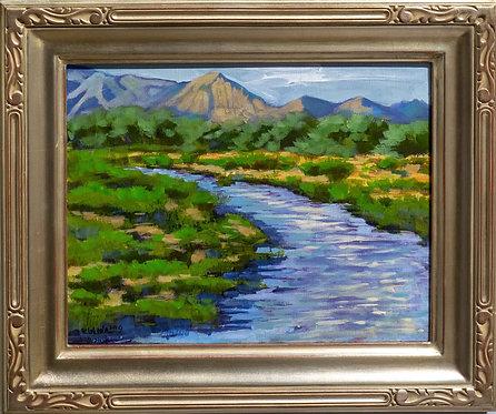 """Santa Cruz River, Monsoon Season"" by Rick Wheeler"