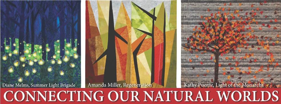 "Studio Art Quilt Associates exhibit ""Connecting Our Natural Worlds"" premiering in Tucson, Arizona"