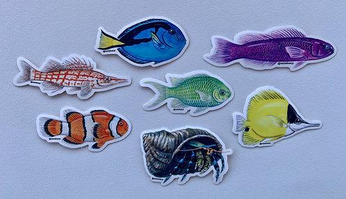 Fish School Stickers by Rachel Ivanyi (7-pack)