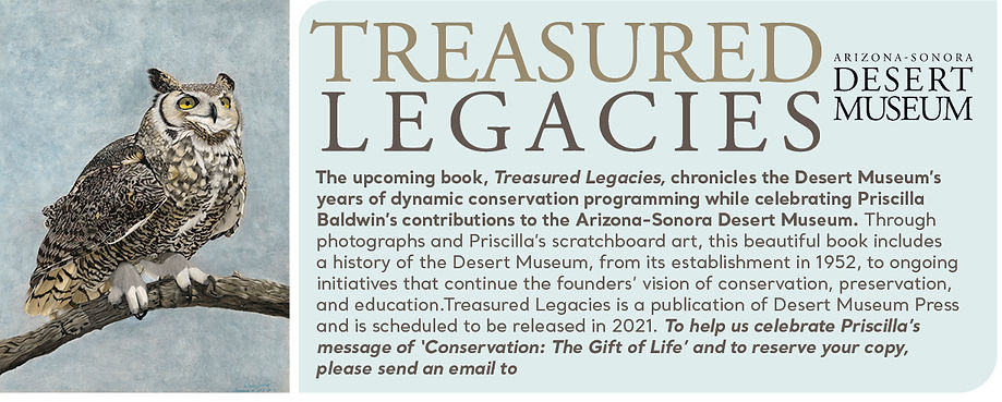 treasured legacies book.jpg