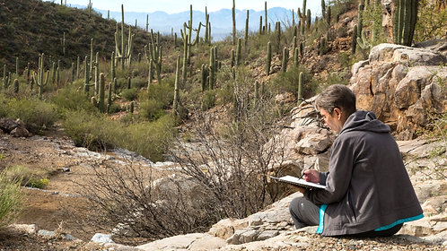 Journaling in Nature: A Desert Canyon