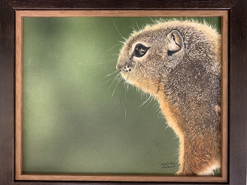 Squirrel! by Karen Nealon