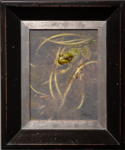 Frog in Spatterdock Roots by Patricia Pepin