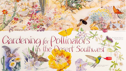 Gardening for Pollinators in the Desert Southwest Poster by Vera Mingwong