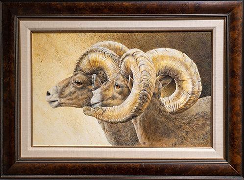 Dawn Watch: Desert Bighorn Sheep by Sharon Schafer
