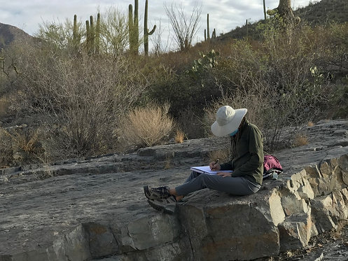 Journaling in Nature: A Desert Canyon (4/29)