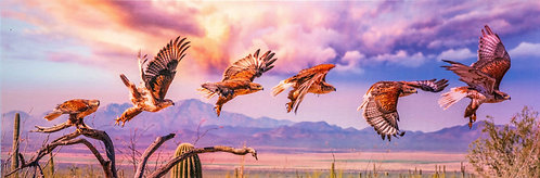 """""""Sunset Flight Above the Valley"""" by Jay Pierstorff"""