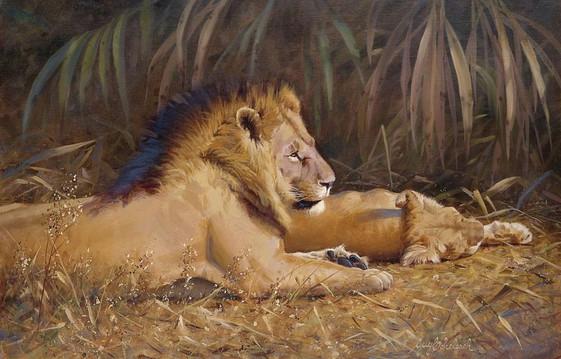 749 Lion Pair Siesta.jpg