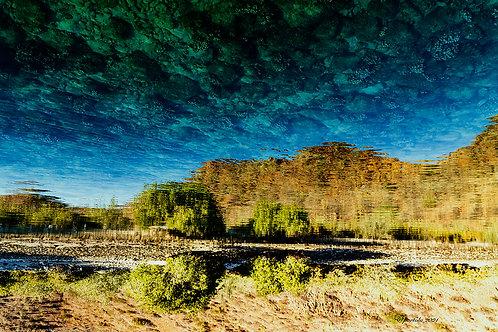 Upside-down by Pilar Salido
