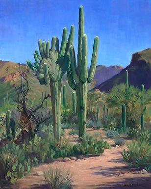 Russell Recchion - Cristate Saguaro - 30 x 24.jpg