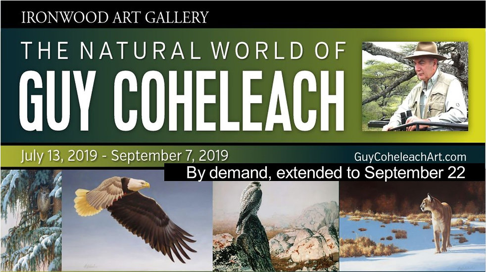 The Natural World of Guy Coheleach at the Arizona-Sonora Desert Museum Art Institut