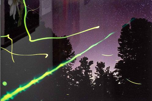 """""""Moths on Metal #5 (Ozark Night Moths and Fireflies)"""" by Robert Renfrow"""