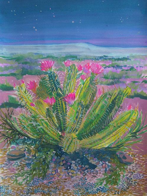 In Bloom by Megan Johnson