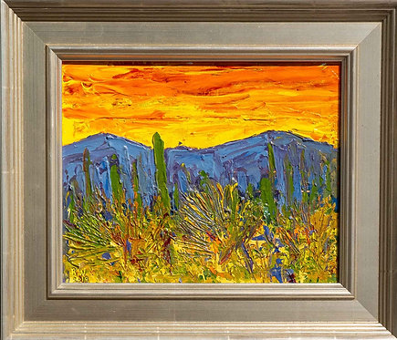 """Sonoran Desert Color"" by Rick Wheeler"