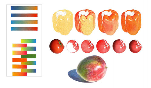 Color Mixing with the Colored Pencil