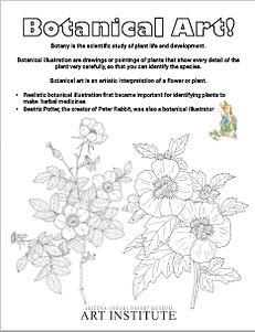 Kids Botanical Art Coloring Sheet Download