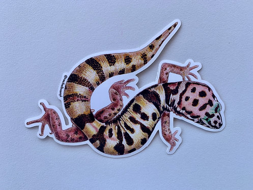 Gecko Sticker by Rachel Ivanyi