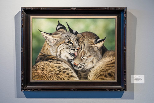 Bliss in a Kiss by Cathy Sheeter