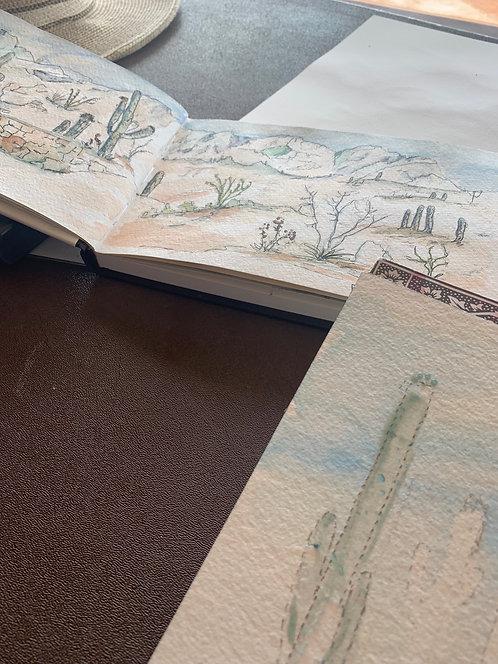 Drawing the Desert: Nature's Wonders